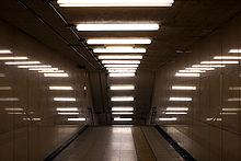 220px-Fluorescent_lamps_artistic